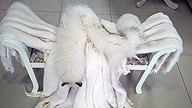 Пошив хутряного одягу норка лисиця